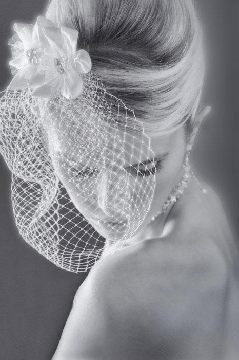 wedding photography bridal portrait with veil