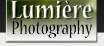 Lumiere Photography
